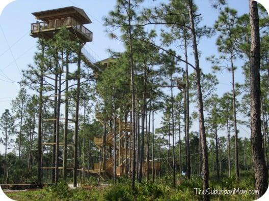 Florida EcoSafaris