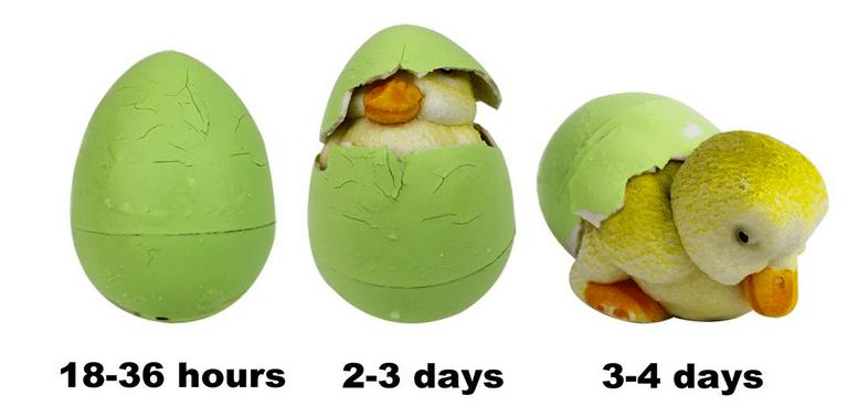 Hide 'Em and Hatch 'Em Eggs