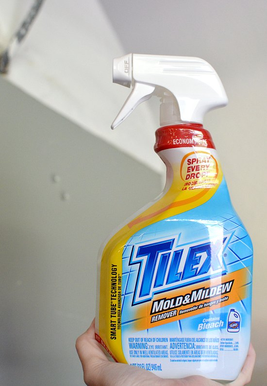 Tilex Mold Mildew