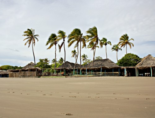 Palm trees and restaurants at Playa Pochomil