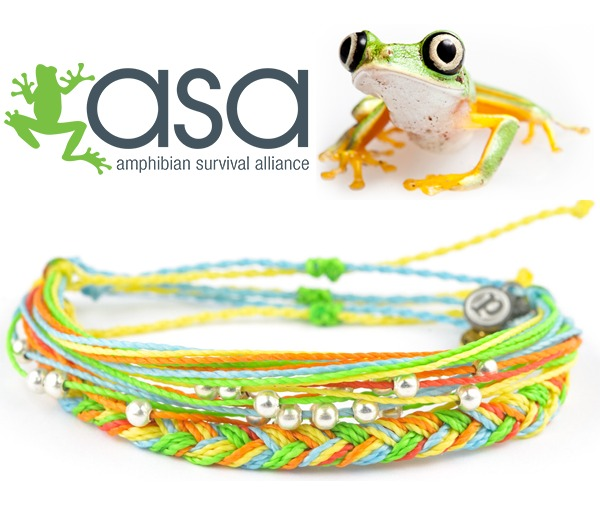 Amphibian Survival Alliance