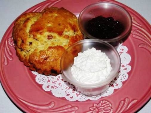 A warm scone with jam and cream