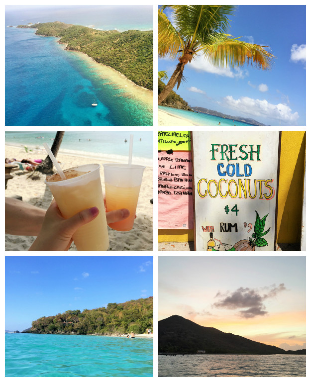 caribbean-week-nyc-collage