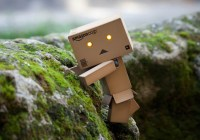 1.-Amazon-Danbo