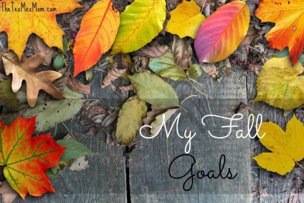fall_goals_2016