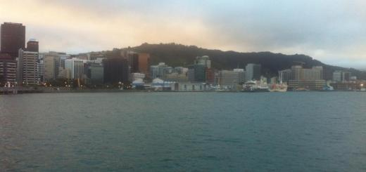 Wellington skyline one of the many reasons to visit New Zealand