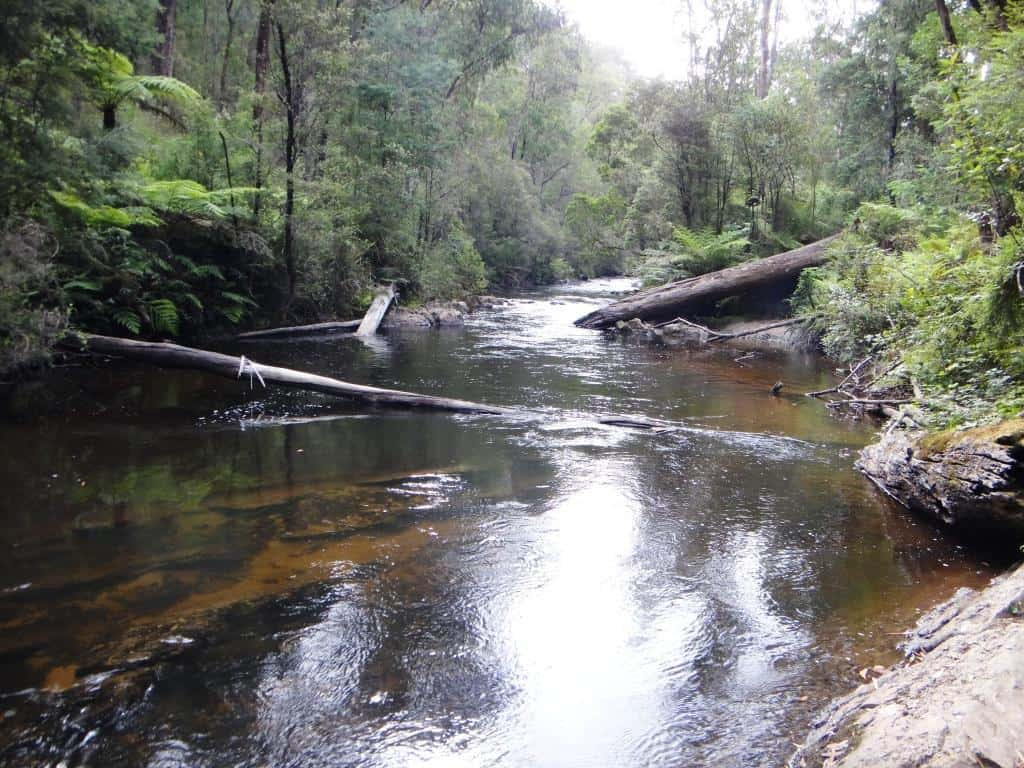 Gippsland Pack Rafting Routes:
