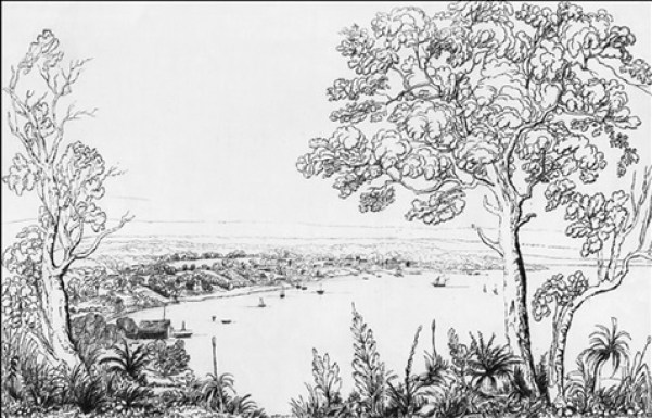 Perth from Mnt Eliza 1838 by CD Wittenoom