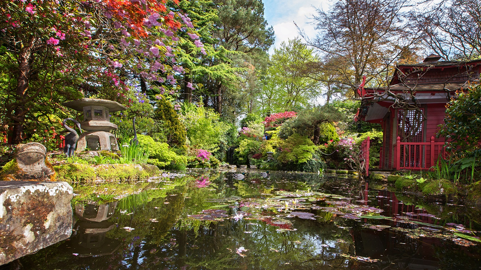 Compton acres in dorset celebrates japanese horticulture for A japanese garden