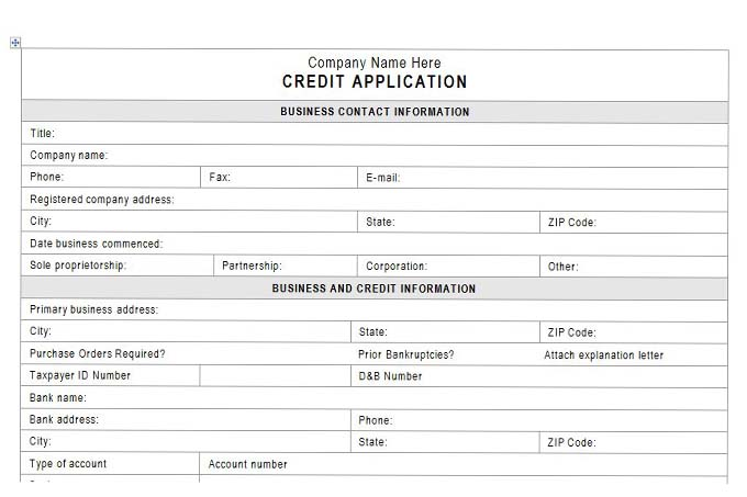 customer credit application - Onwebioinnovate - credit application