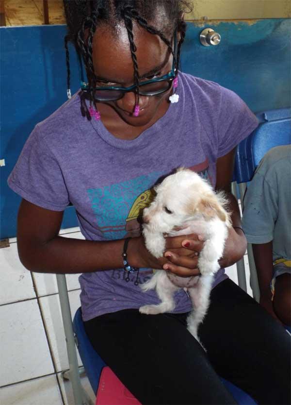 Consoling a nervous pup