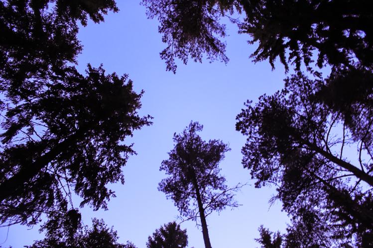 Teijo National Park The Wanderlust Bug 10