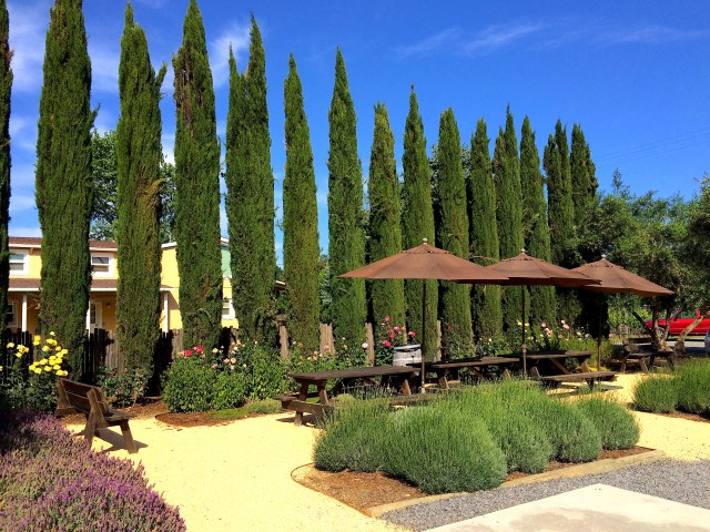 Unti Vineyards, Sonoma