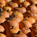 Halloween – Is it a bit of harmless fun?