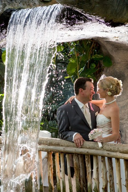 Butterfly Conservatory offers intimate, unique venue for ceremony, reception & year-round photos