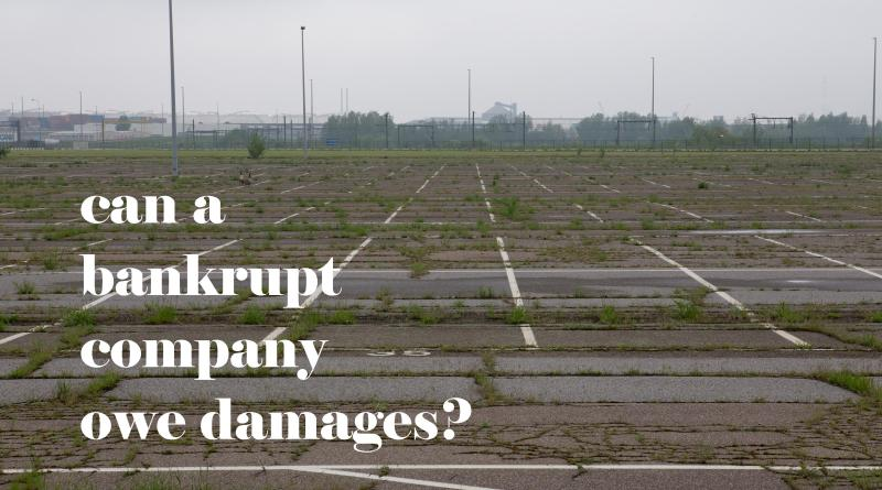bankruptsy and damages