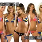 meanwhile-in-scandinavia-5a79b0