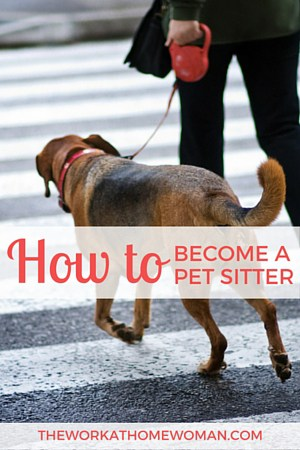 How to Become a Professional Pet Sitter - pet babysitter