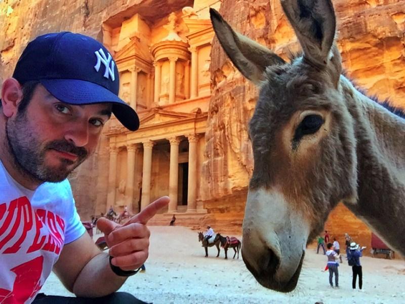 Burros de Petra en Jordania