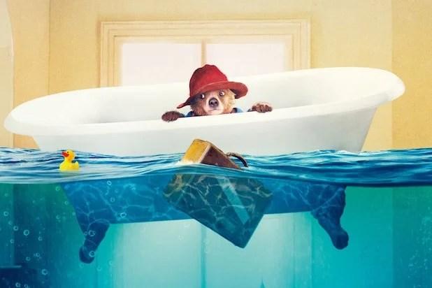 Cute Duck Hd Wallpaper How Paddington Bear Kept The Weinstein Company Afloat