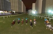 horserace16
