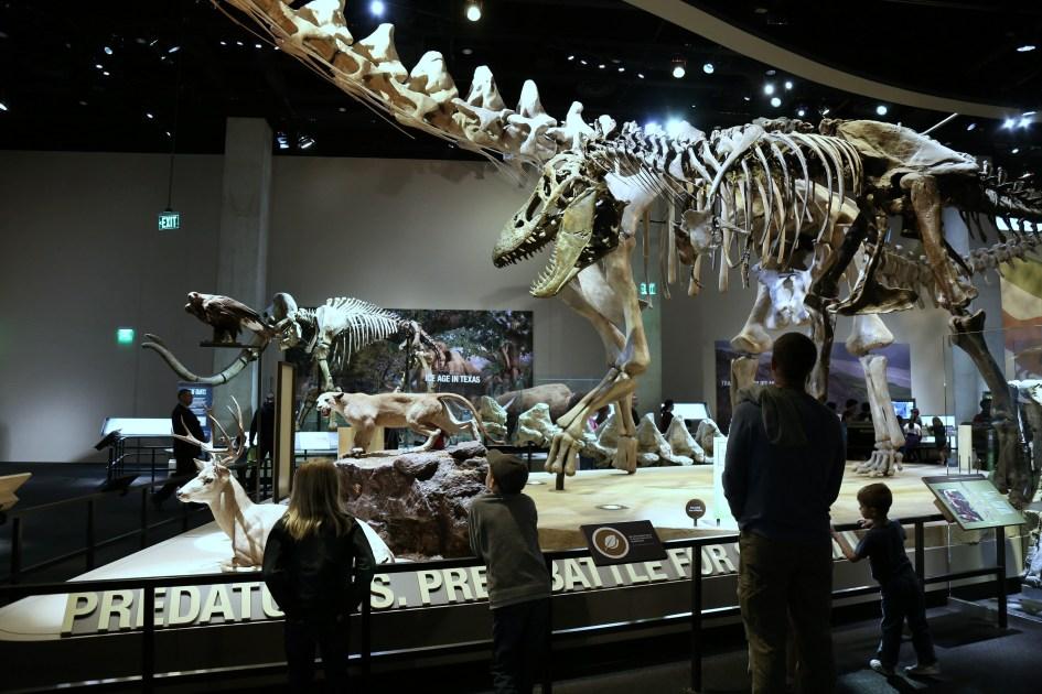 Museum TX 8a