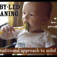 Baby-Led Weaning: the traditional approach to solid food