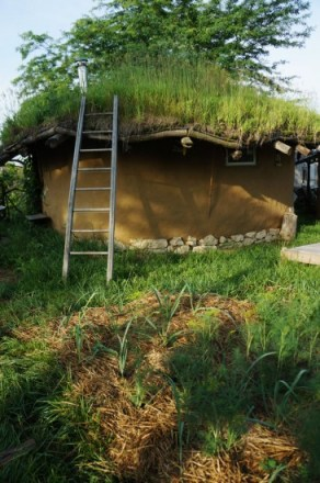 Gobcobatron: Cob House North Exterior