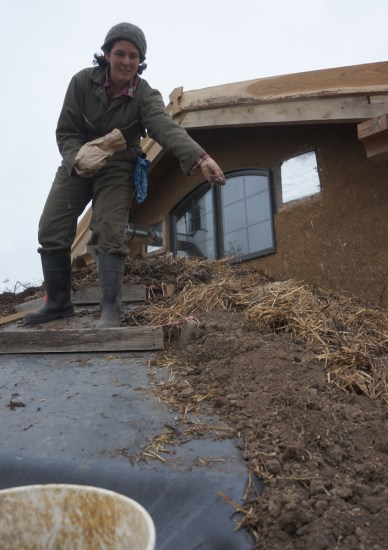 Planting the Living Roof