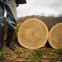 Big Wood Weekend
