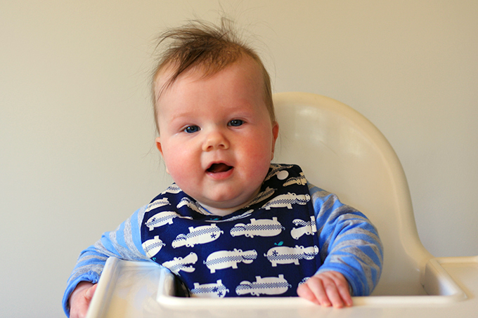 Reversible Baby Bib