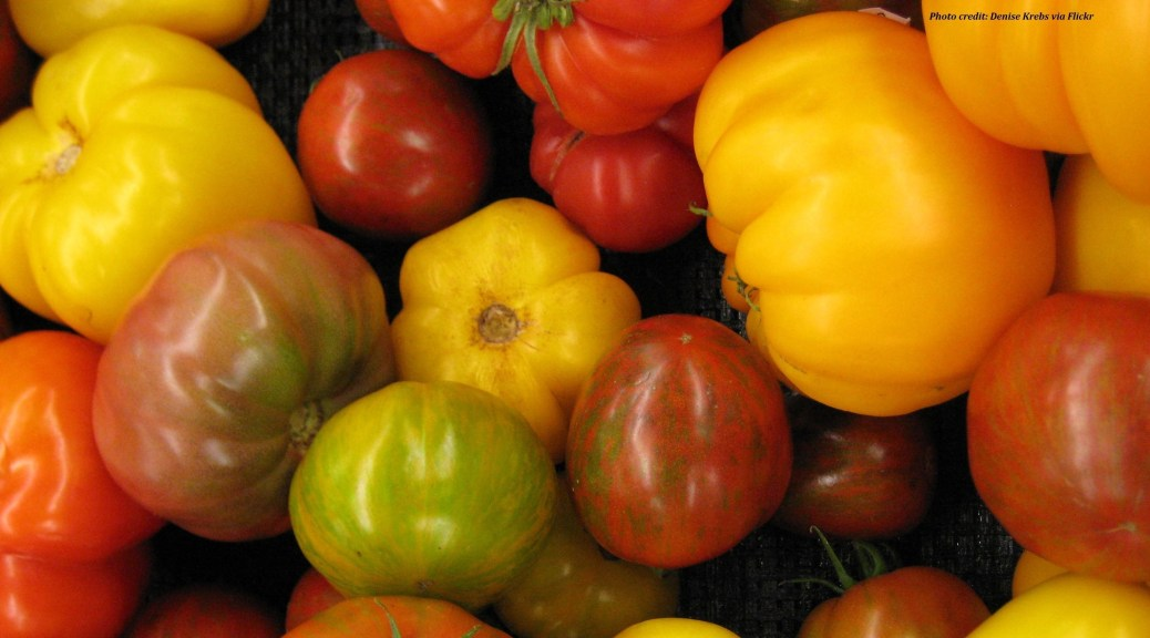 heirloom tomatoes credit2