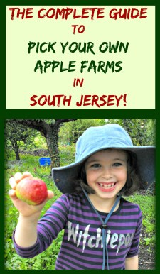 The Complete Guide To Pick Your Own Apple Farms in South Jersey! | find out more at www.thingstodonewjersey.com | #applepicking #nj #newjersey #southjersey #burlingtoncounty #gloucestercounty #pickyourown #apple #apples #orchards #fun #familyfriendly #daytrips #fieldtrips