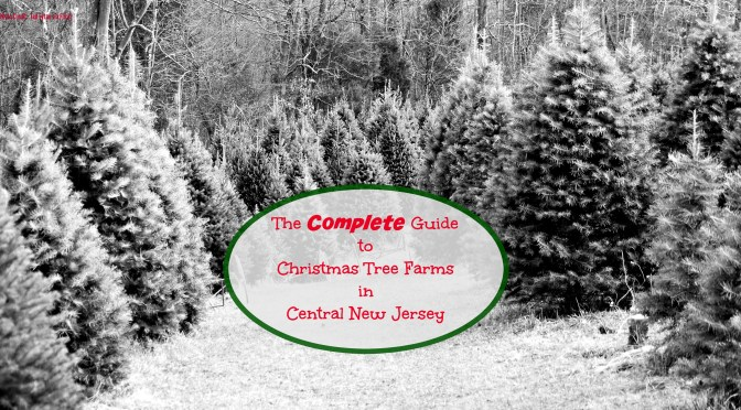 The COMPLETE Guide to Christmas Tree Farms in Central New Jersey! | Find out more at www.thingstodonewjersey.com | #nj #newjersey #christmas #christmastreefarms #christmastree #farms #centralnewjersey #princeton #somerville