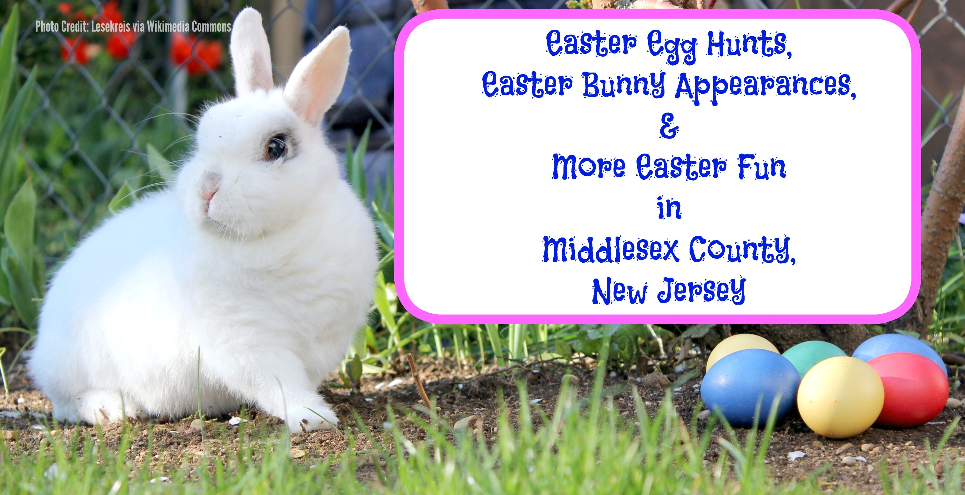 Easter Egg Hunts Bunny Appearances More Fun In Middlesex County Events New Jersey