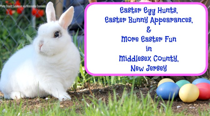 Easter Egg Hunts, Easter Bunny appearances, & more Easter fun in Middlesex County,NJ! | find out more at www.thingstodonewjersey.com | #nj #newjersey #middlesexcounty #carteret #dunellen #spotswood #woodbridge #edison #jamesburg #plainsboro #easter #events #egghunts #easterbunny #wheretosee #fun #kids #free