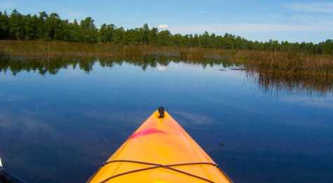 Paddle down the lazy Batsto River in New Jersey's Pine Barrens this summer! | canoeing in nj | kayaking in nj | canoeing in new jersey | kayaking in new jersey | canoeing in pine barrens nj | kayaking in pine barrens nj | canoeing in nj pinelands | kayaking in nj pinelands