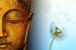 Buddha-Impermanence