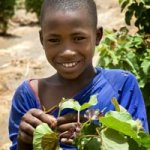 Kia Pledges 1.5 Million for Charity Shrub Planting Programme in West Africa