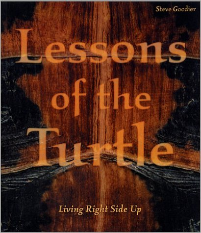 lessons-of-the-turtle