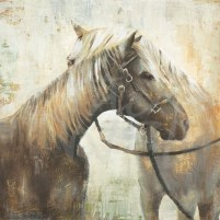 animals, horses, lodge, equine art, neutrals, seattle art, liz jardine