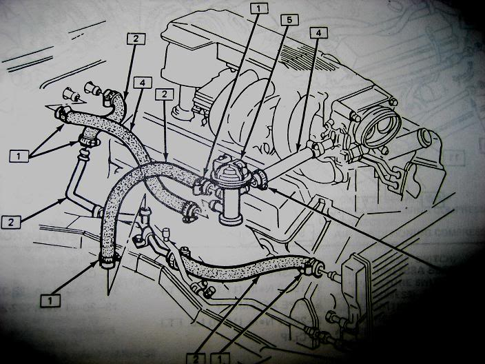 TPI Heater Hose Diagram (Picture) - Third Generation F-Body Message