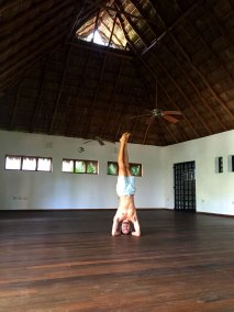 the-yoga-palapa
