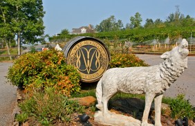 Wolf Mountain Vineyards
