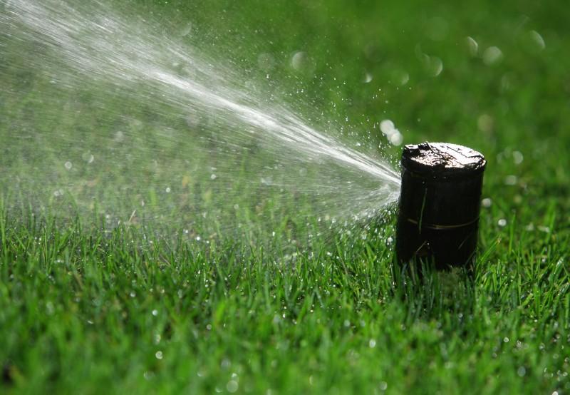 About Our Team Thirsty Turf Irrigation Gorham, Maine