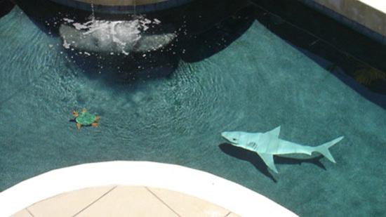 3d-sharkturtle