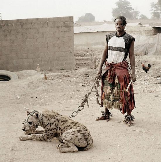 hyenaafricanpet