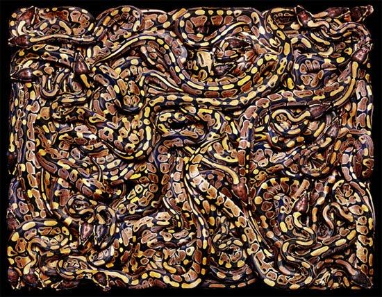 many-snakes