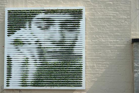 green-graffit