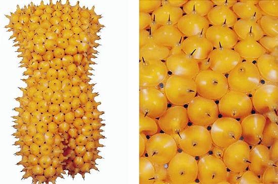 fruit-sculpture